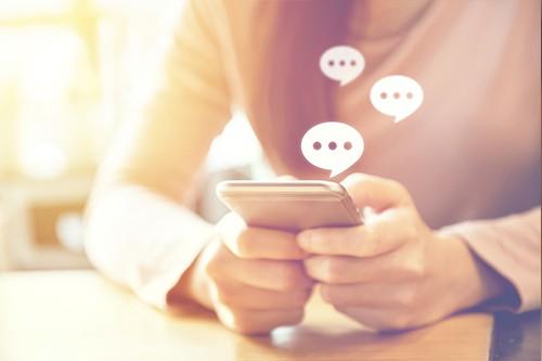 Chatbot Dialog Bird Smalltalk